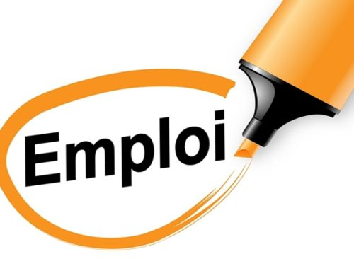 Offre d'emploi LIGUE – Responsable Développement et Communication