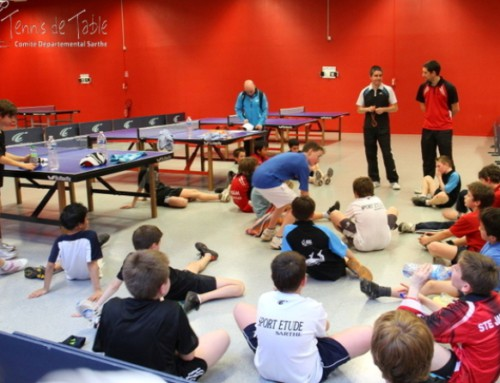 Section Sport Etudes en Sarthe