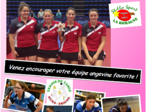 Le derby féminin de l'Anjou samedi 22 novembre 2014