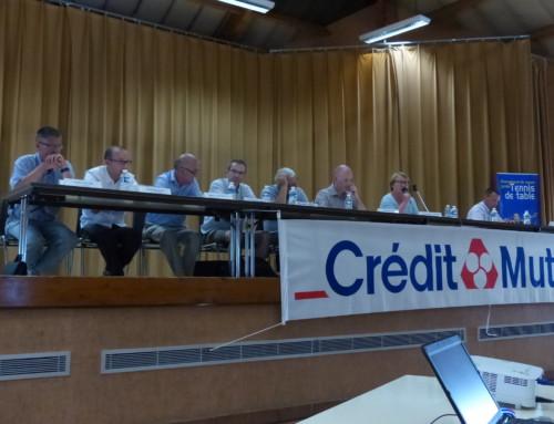 AG EXTRAORDINAIRE ET ORDINAIRE – 27 juin 2015 – Sillé Le Guillaume (72) : retour en photos