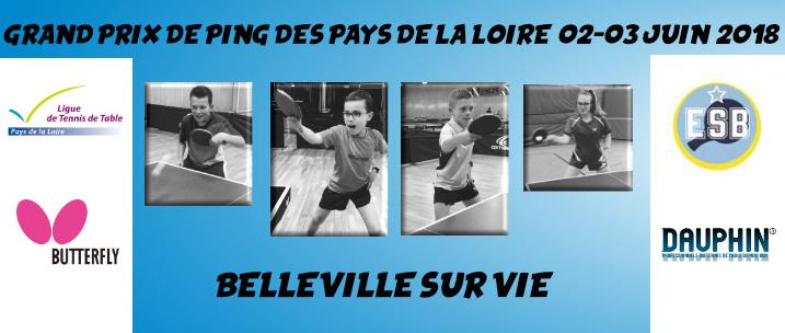 Grand prix de ping des pays de la loire les r sultats - Ligue pays de la loire tennis de table ...
