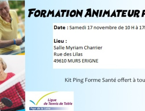 Formation animateur Ping Forme